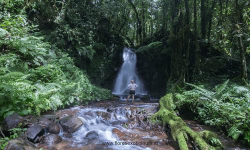 Komodo Flores adventure tours, Ranamese waterfall,Flores adventure tours